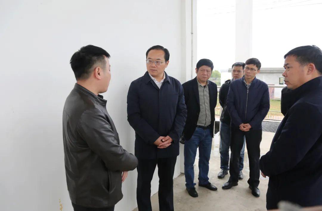 武宁县委书记杜少华调度环保整改工作
