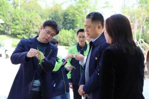 漯河市:城管局长现场查看 保持攻坚势头不放松