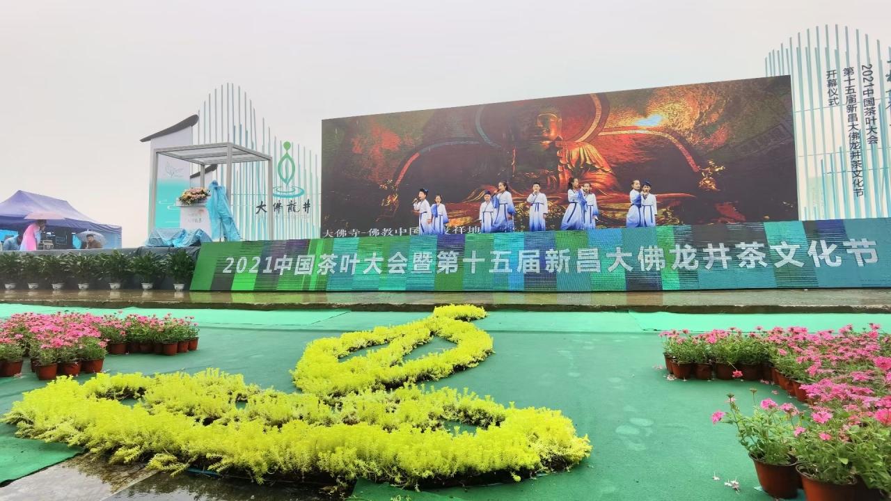 """数字化赋能茶产业 新昌""""大佛龙井""""跑出加速度"""