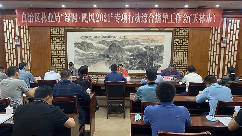 """李巧玉到玉林指导""""绿网•飓风2021""""专项行动"""
