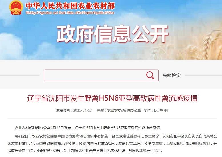 农业农村部:沈阳发生野禽H5N6亚型高致病性禽流感疫情