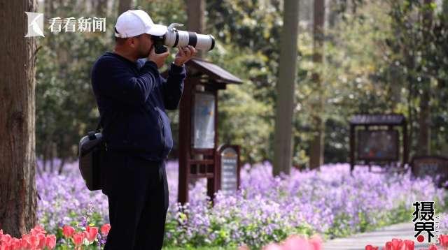 视频 花博园有多美?崇明摄影师带你走进花香童话图片
