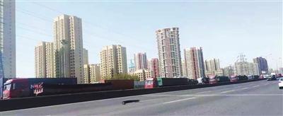 秦滨高速滨海新区段通行难(图)