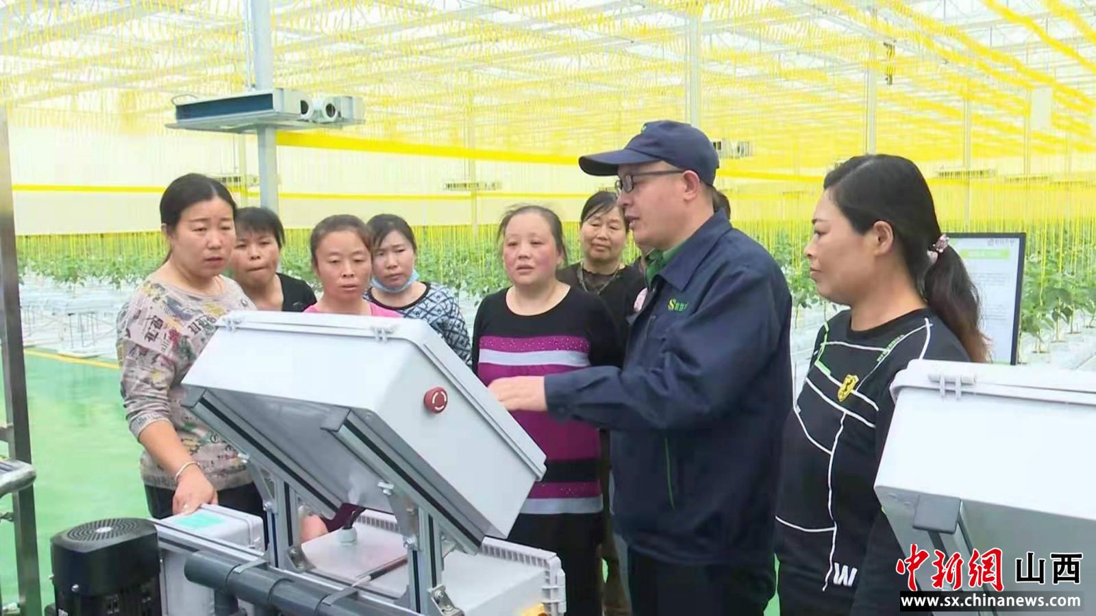 """种菜用上高科技 """"智慧大棚""""助农增收"""