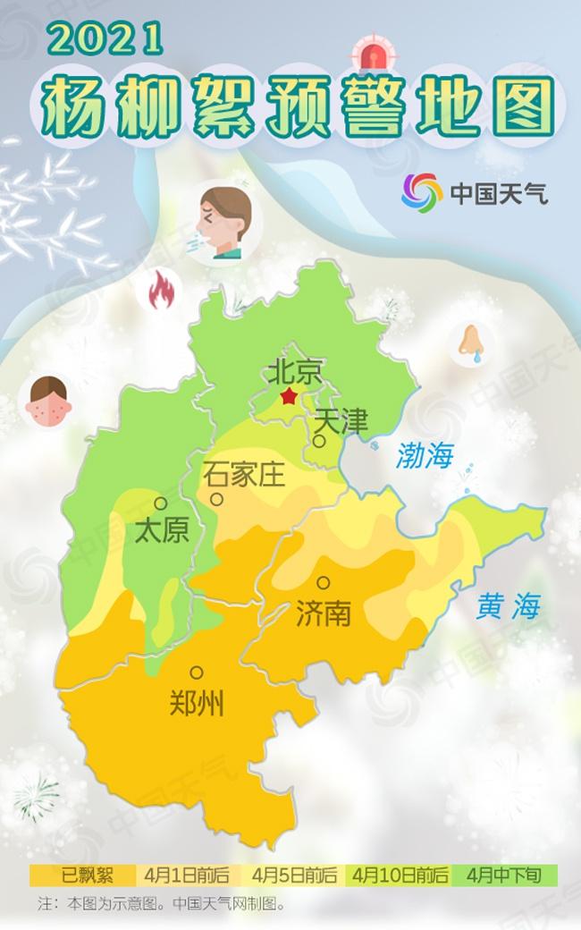"""又到一年春来""""雪"""" 2021年杨柳絮预警地图看你家何时飞絮?图片"""