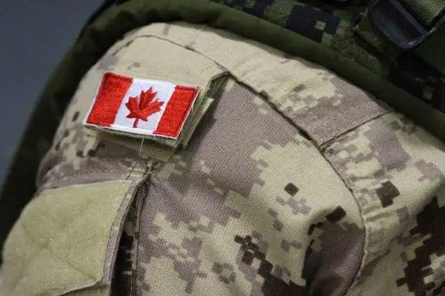 """乌克兰军方又干一件蠢事!不仅""""辱印""""还惹恼加拿大"""