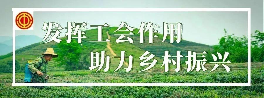 【关注】云南省总工会将下拨专项工作经费810万元,支持推进乡村振兴工作