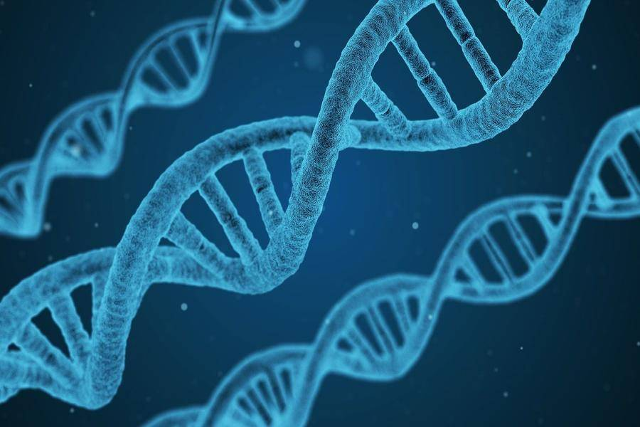 半年时间第二轮,生物医药企业博雅辑因完成4亿元B+轮融资