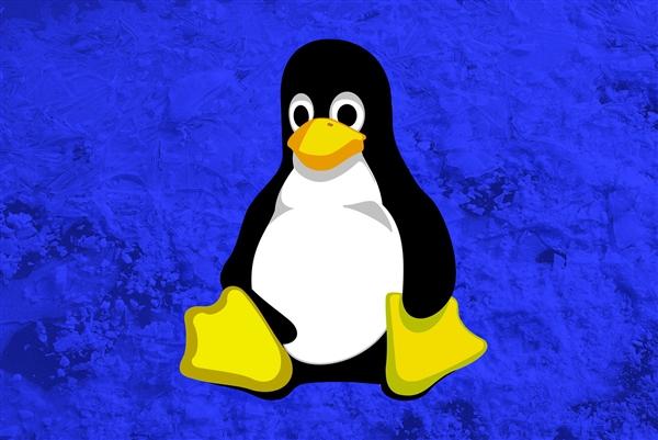 美国大学教授向Linux提交含bug代码 管理员怒而拉黑学校