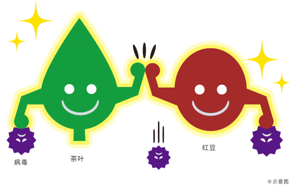 """植物""""大战""""病毒? 日本龙角散AVSS健康成分引关注"""