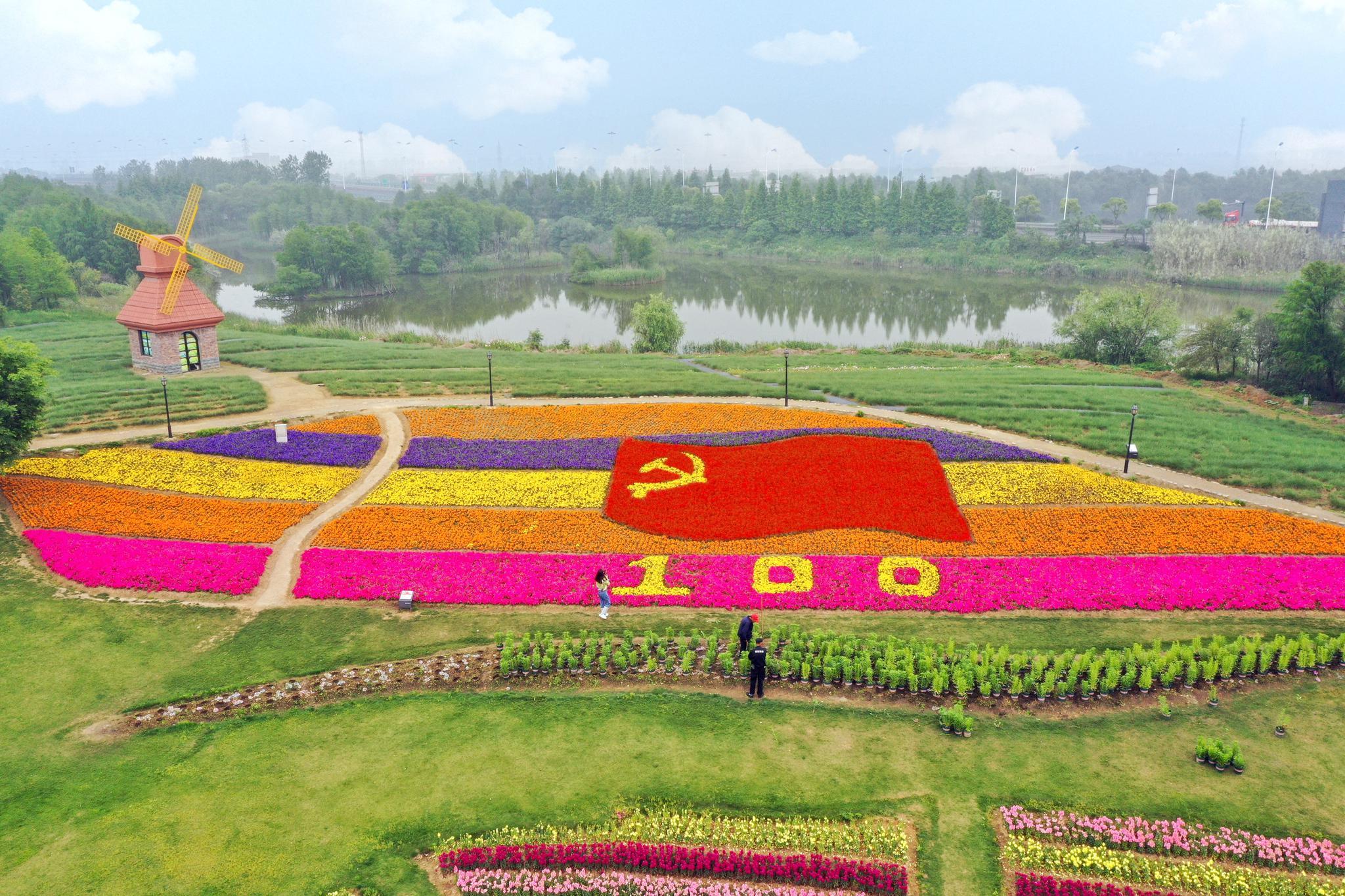 杭州湾海上花田景区的党旗花海成为打卡地