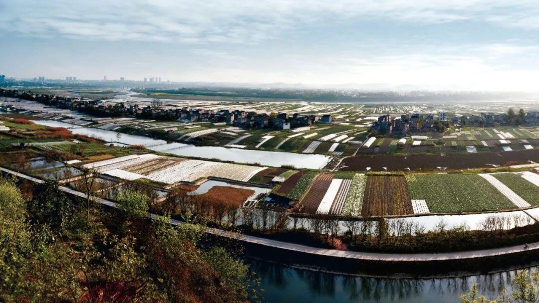 资产规模突破1.1万亿!重庆农商行走上新万亿之路图片