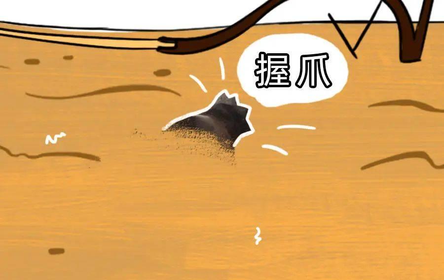 """6000年前""""愤怒的小鸟""""告诉你原始人有多浪漫"""