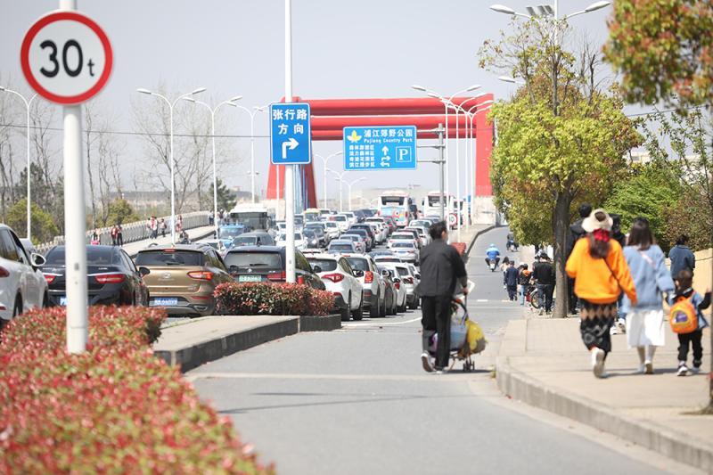 超过迪士尼和布达拉宫,上海这个公园竟排在全国热门榜首位……