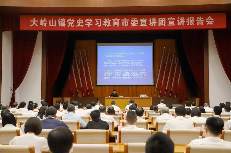党史学习教育东莞市委宣讲团走进革命老区大岭山