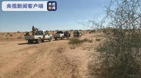苏丹西达尔富尔州暴力冲突已致132人死亡