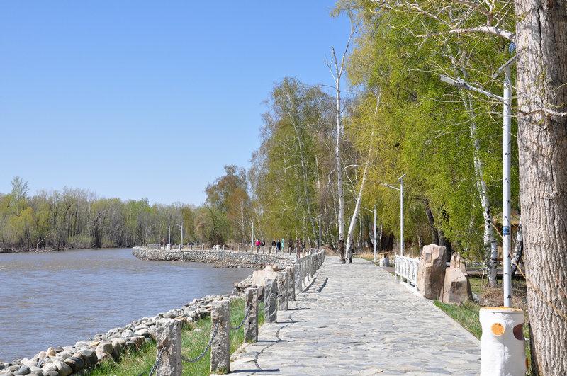 绿水青山丨新疆哈巴河白桦林景区:鸟鸣呖呖水淙淙