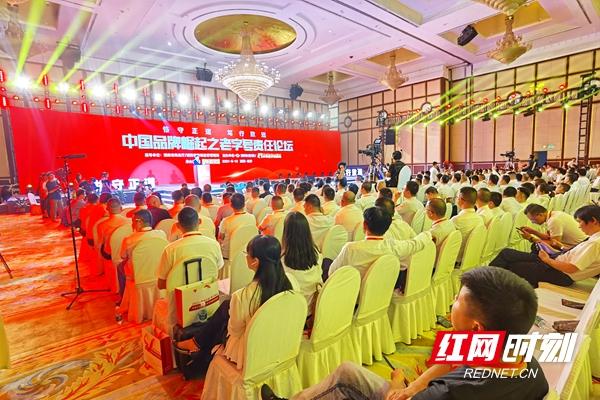 恪守正道,笃行致远 五家老字号在长沙论道中国品牌崛起