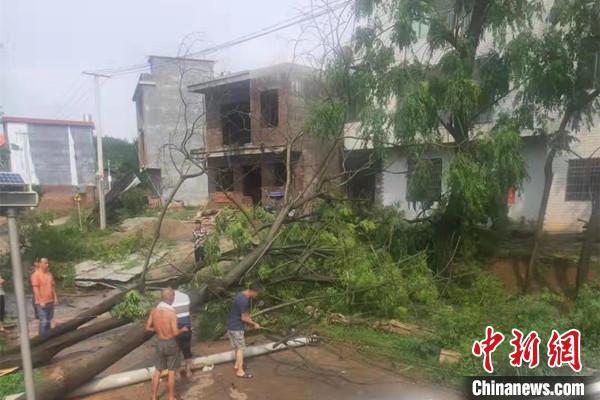 湖南嘉禾县突降冰雹致一乡镇6000余亩农作物受灾