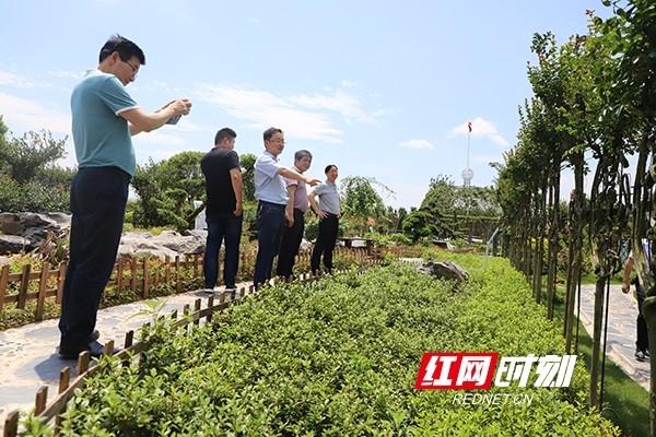 衡阳市乡村振兴局:瞄准工作目标 将仙楠村打造成乡村示范标杆