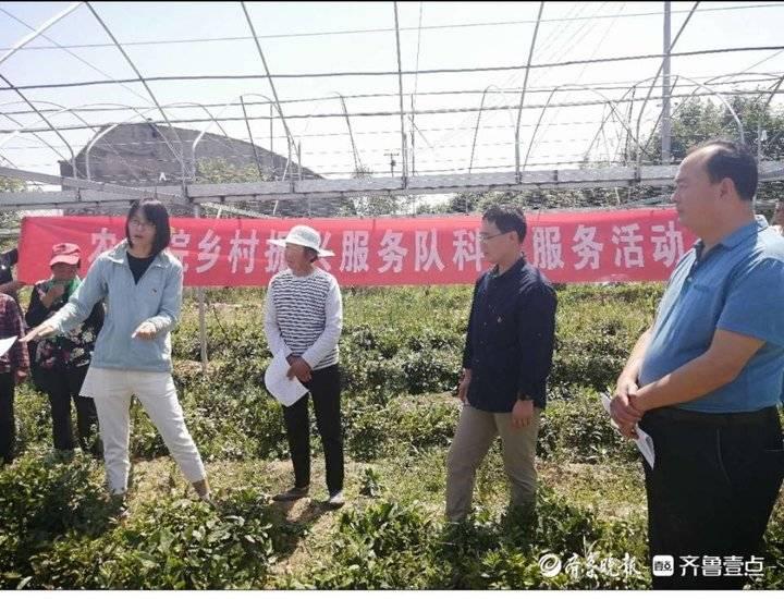 祝阳镇二王安村:加快集体经济发展,促进乡村振兴战略全面实施
