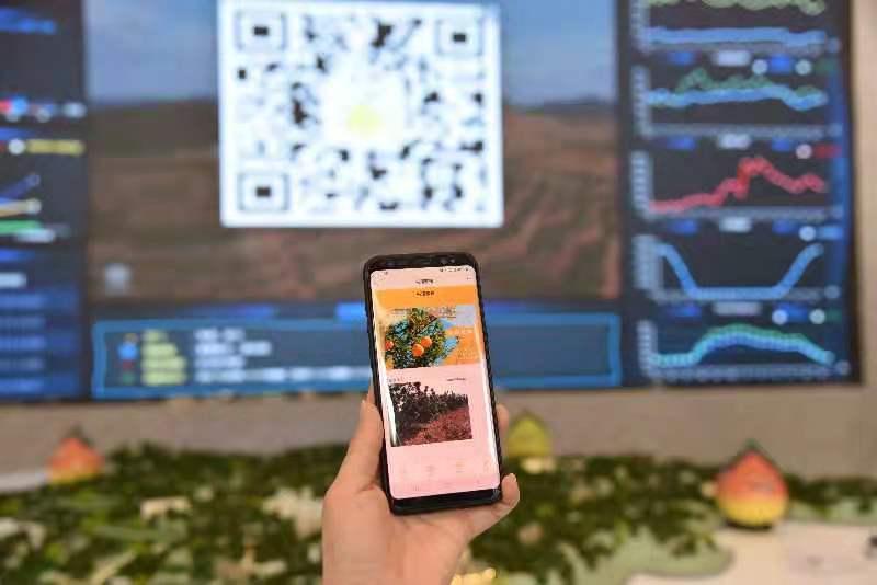 累计建成6.1万5G基站!广东移动5G赋能数字经济转型升级