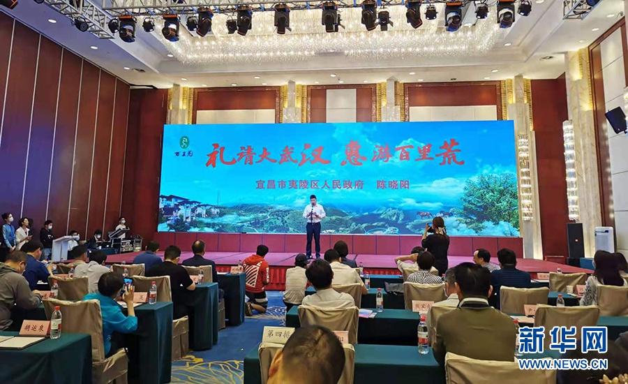 湖北宜昌在汉推介旅游胜地 赠送市民百万张门票