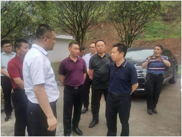 副市长王毅巡查巴河一段