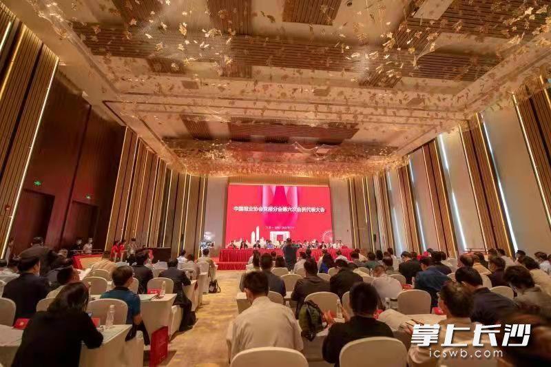讲述新时代美丽湖湾故事 中国报业协会党报分会第六次会员代表大会召开