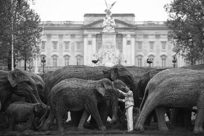 """百象""""穿行""""伦敦市"""