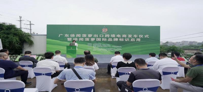 """广东徐闻菠萝出口跨境电商""""零突破"""" 国际品牌标识启用"""