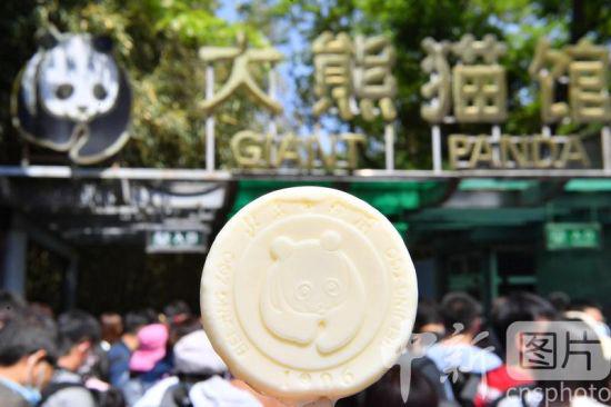 北京动物园的熊猫主题文创雪糕