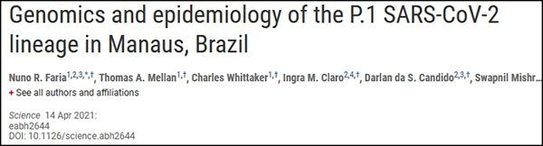 """""""对P.1变体的基因和流行病学在巴西玛瑙斯的追踪"""",《科学》杂志论文截图"""