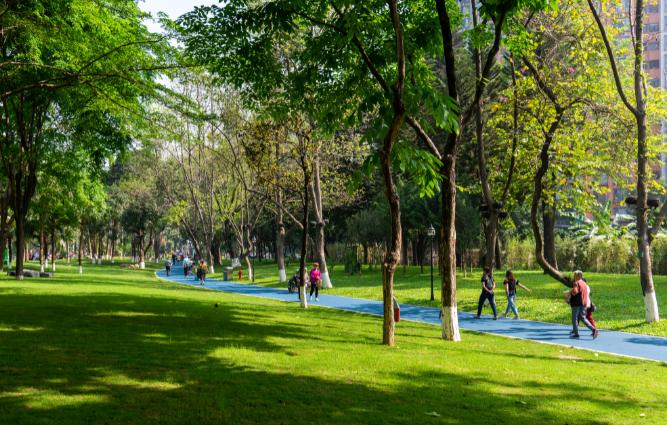 """1万多㎡人工湖、连片草坪...黄埔公园巨型""""绿肺""""全新亮相"""