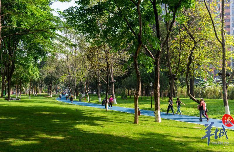 """1万平方人工湖、连片草坪……黄埔公园巨型""""绿肺""""全新亮相"""