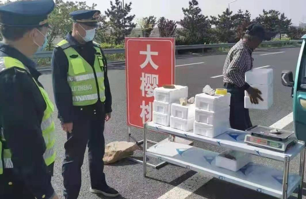 太危险!烟台商贩果农们别在公路边摆摊卖大樱桃了!