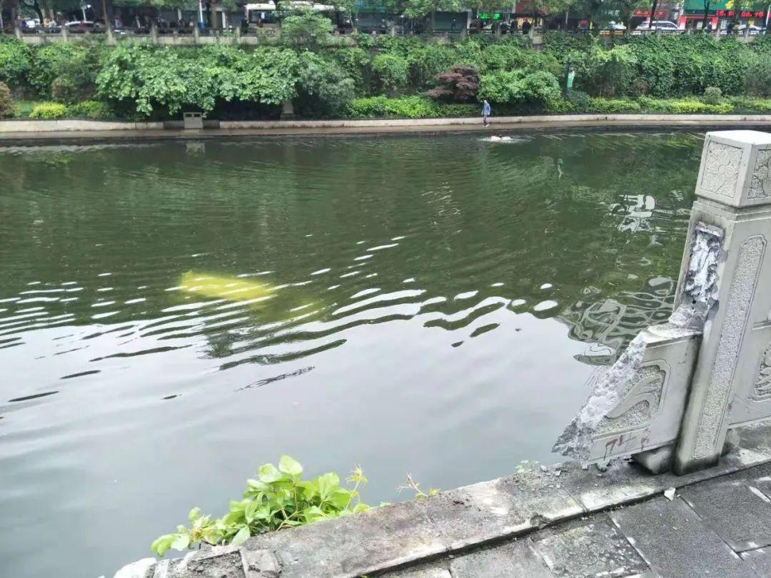 遵义城区小车冲下河,3位市民跳河救起母子俩