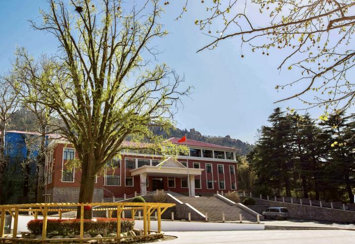 报考青岛启迪中学有四种方式