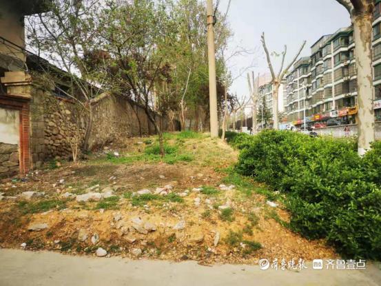 泰山区综合行政执法局:治理城市裸露土地,植绿增绿厚植生态底色