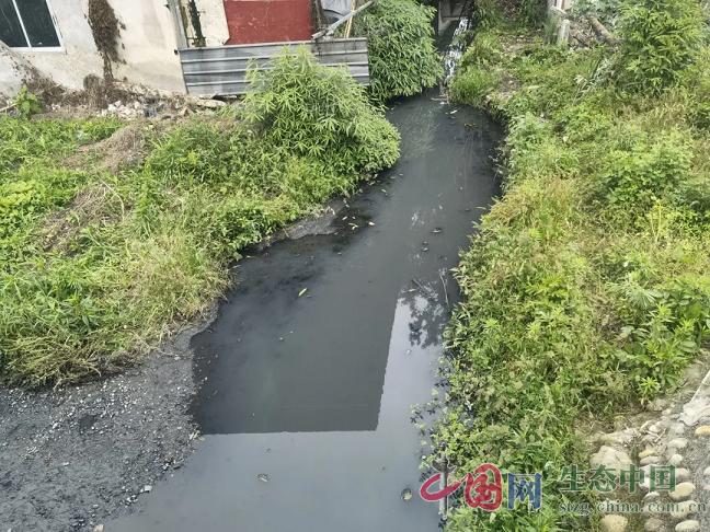 四川成都市新都区、双流区黑臭水体治理不彻底,问题突出