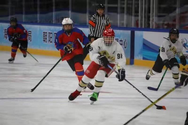 成都冰球小子夺得首届北京冰球公开赛季军