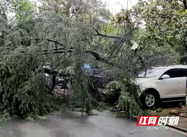 郴州联通第一时间抗击暴雨冰雹保通信
