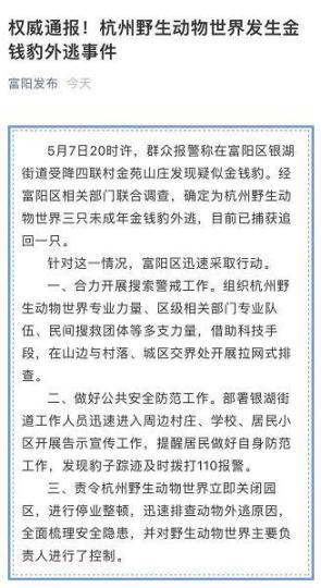 杭州野生动物世界三只金钱豹外逃 目前已捕获追回一只