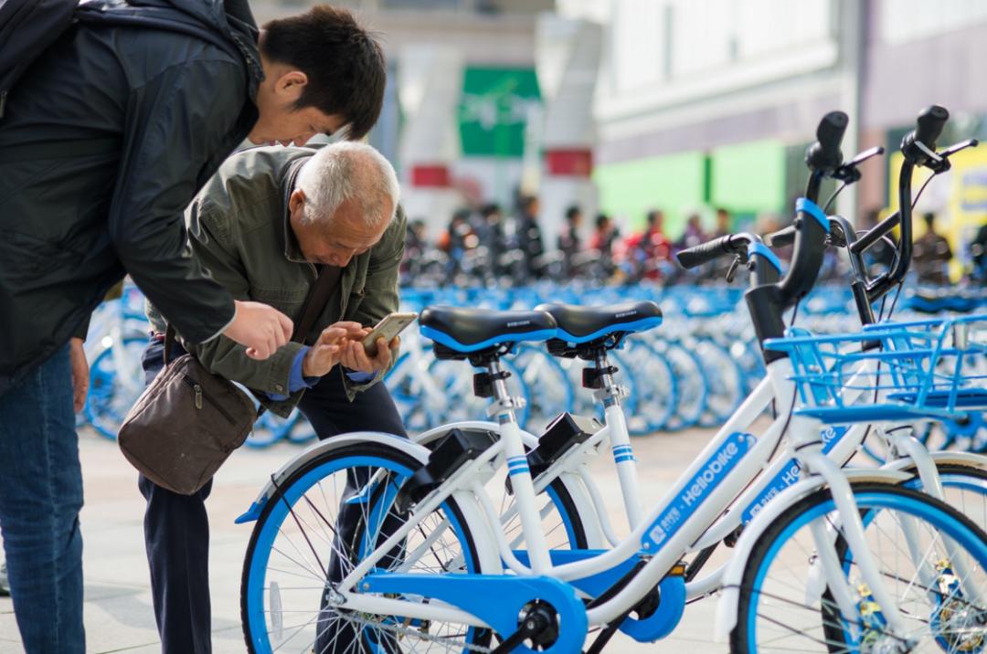 哈市共享单车马上投放…在这几个区↘哈啰、青桔、美团