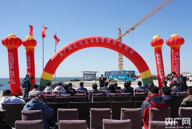 """央广网""""云上农场""""海参春捕活动在长海举行"""