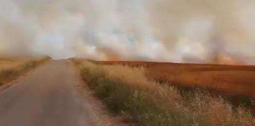 巴勒斯坦人向以色列发射燃烧气球 引发数起火灾