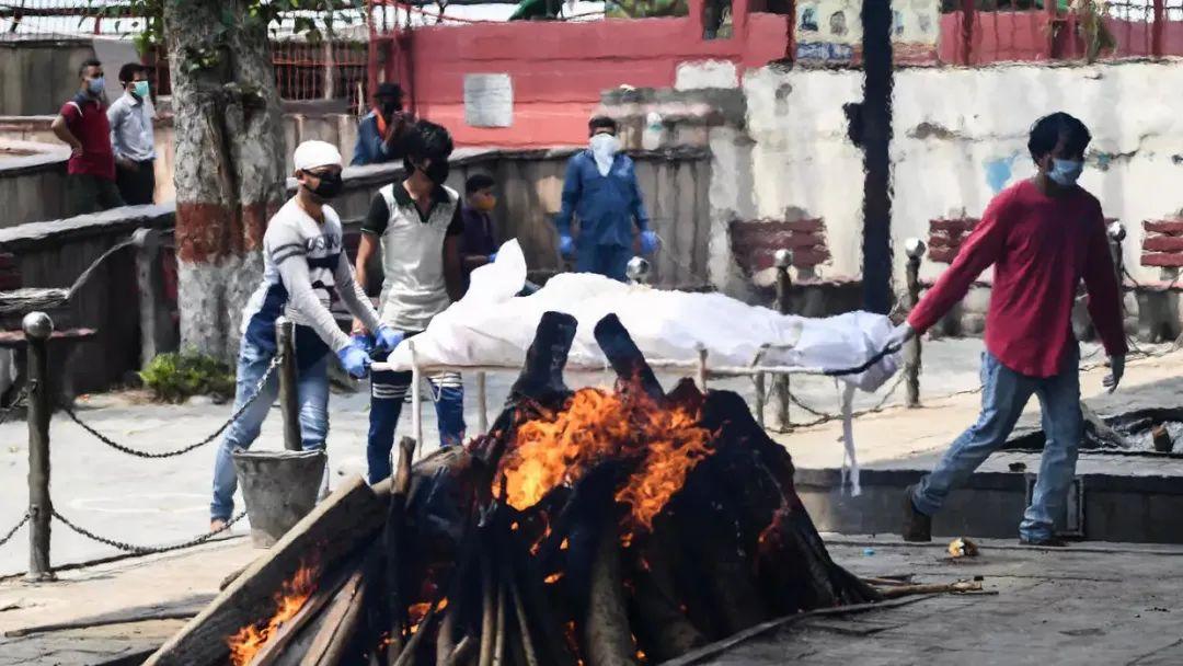 不是瘟疫是谋杀 在印度亲历新冠海啸