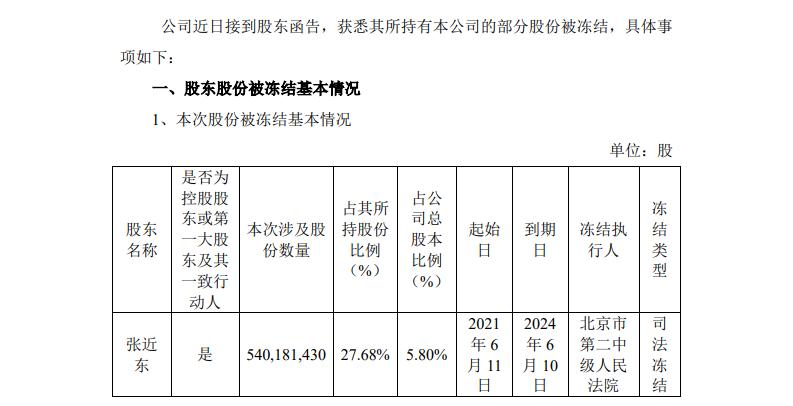 苏宁易购:张近东所持5.8%公司股份被司法冻结