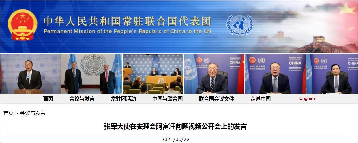 张军大使:阿人和谈虽进展缓慢,但不能付诸东流图片