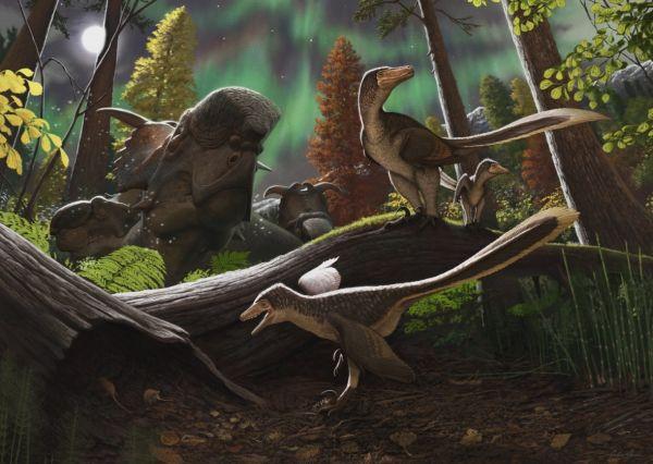 """美媒:恐龙幼崽曾在北极""""蹒跚学步"""""""